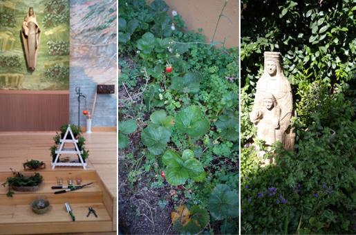 Jardiners i Jardineres de la Creació